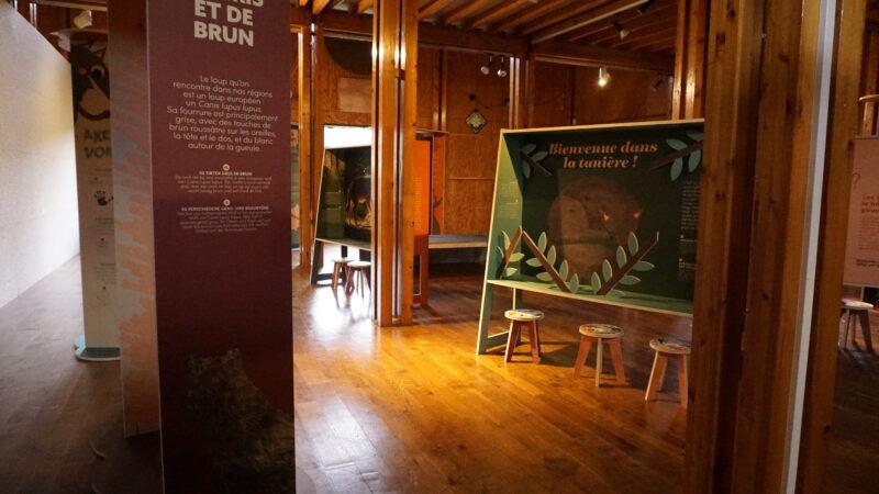 Sfeerbeeld van de tentoonstelling De Wolf